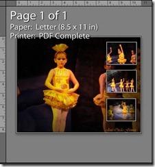 print17