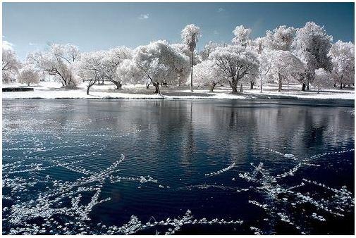 Fotograf a infrarroja fotografia para principiantes for Immagini desktop inverno