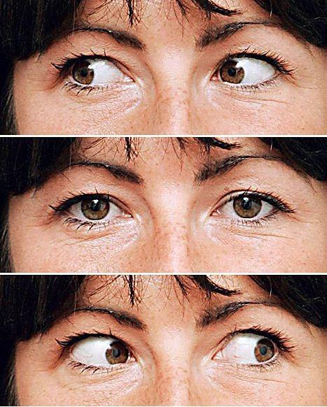 el ojo el cerebro y la creatividad fotografia para