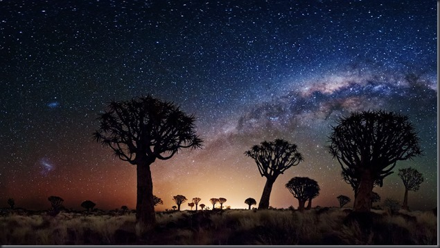 Trees_Galaxy_Milky_Way_Stars_sky_desert_1920x1080